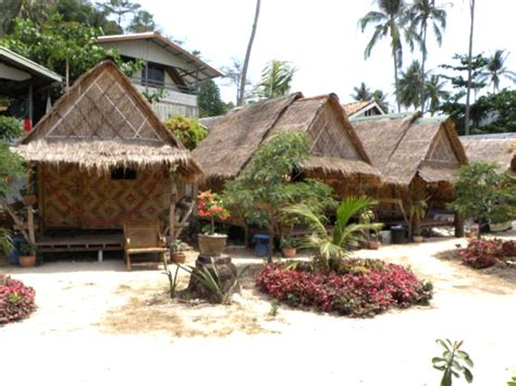 bungalow krabi flowers bungalows phi phi in krabi thailand with
