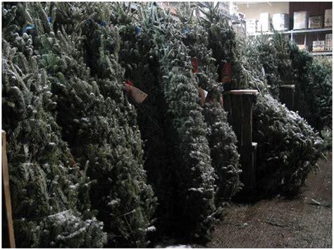 christmas tree decoration 2008 avoision com avoision com