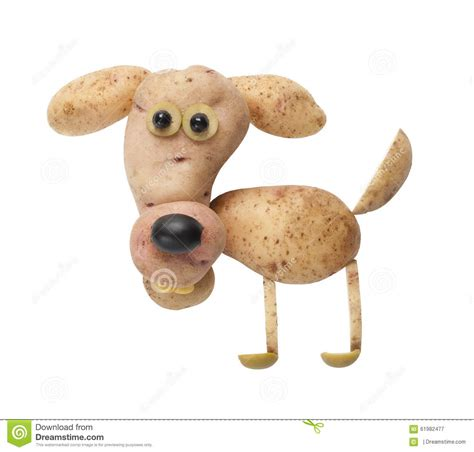 dogs made of made of potato stock photo image 61982477