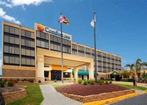 comfort inn in maryland comfort inn gold coast ocean city md hotel reviews