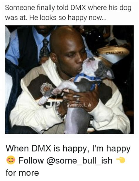 dmx where my dogs at 25 best memes about memes