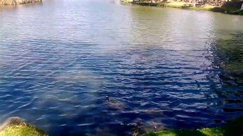 laguna san juan hueyapan youtube