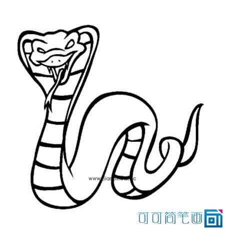 scorpion king coloring page 眼镜王蛇简笔画 可可简笔画
