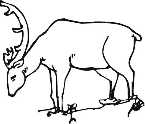 key deer coloring pages deer color by number key deer coloring page