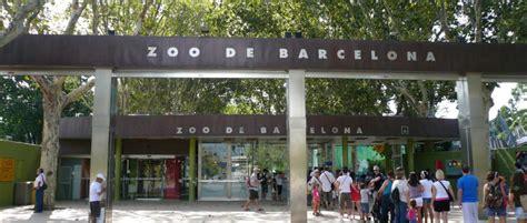 barcelona zoo barcelona zoo tempo libero a barcellona guida di