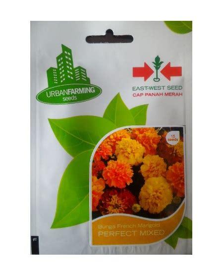 15 Benih Bunga Ulam Raja Mix benih panah merah marigold mix 15 biji jual tanaman hias
