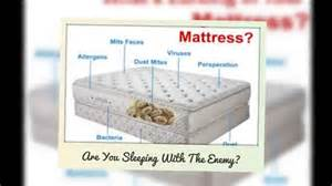 how to clean a mattress that has been on cleaning your mattress for dust mites mississauga ontario