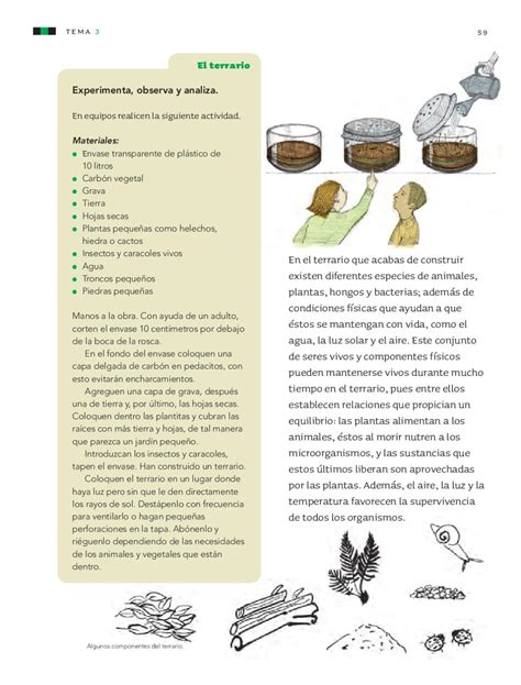 libro de ciencias naturales 3 grado sep 2012 downloadily ciencias naturales 4to grado by rar 225 muri issuu