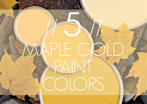 gold paint colors imagine design 187 5 maple gold paint colors from better