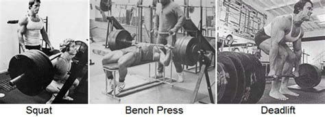 squat bench deadlift the best muscle building exercises lee hayward s total