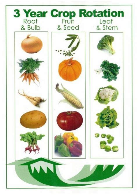 vegetable garden rotation the benefits of crop rotation fresh organic gardening