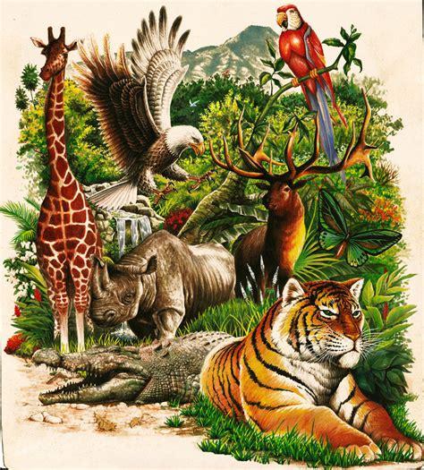 la fauna pictures 191 que es la fauna rina26