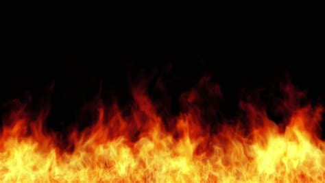increasing burning fire isolated  stock footage video