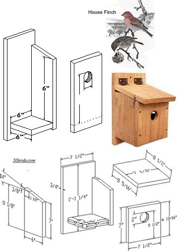 house finch birdhouse plans house finch nest box nesting boxes and bird feeders pinterest nest box nest and box