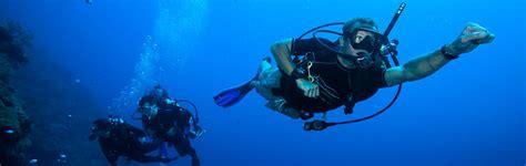bonaire dive bonaire scuba diving courses dive friends bonaire