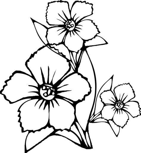 flower coloring pages easy simple drawings of flowers clipart best