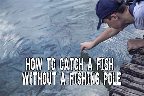 where when and how to catch fish on the east coast of florida classic reprint books survival fishing how to catch a fish without a fishing