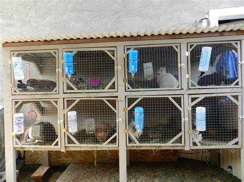 Step Back Hutch Diy Rabbit Hutch Plans For Breeding Plans Free