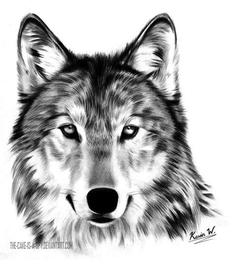 ponad 25 najlepszych pomysł 243 w na temat tatuaże z wilkiem