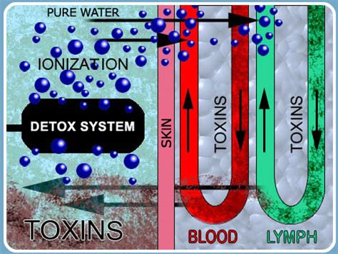 Detox Ion Spa Foot Bath by Ionic Detox Monument Chiropractic