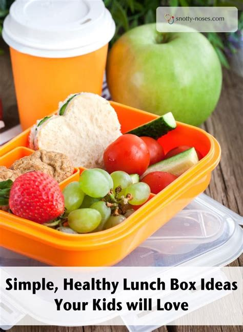 d light healthy on the go 72 best healthy lunches on the go images on