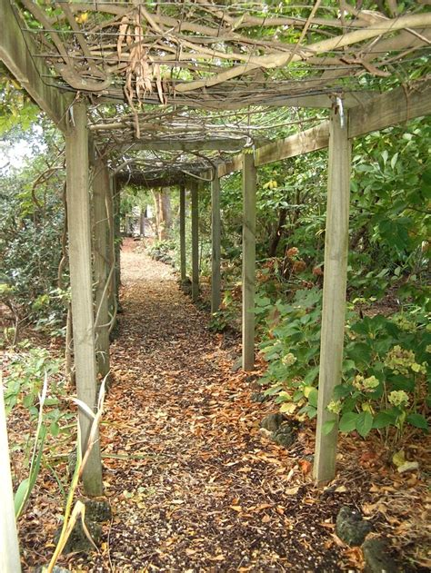 Pin By Edna Boland On Edna Walling Gardens Pinterest Edna Walling Garden