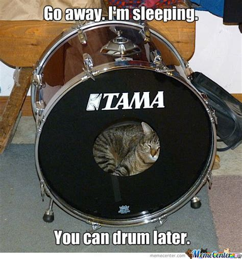 Drummer Memes - drumming memes best collection of funny drumming pictures