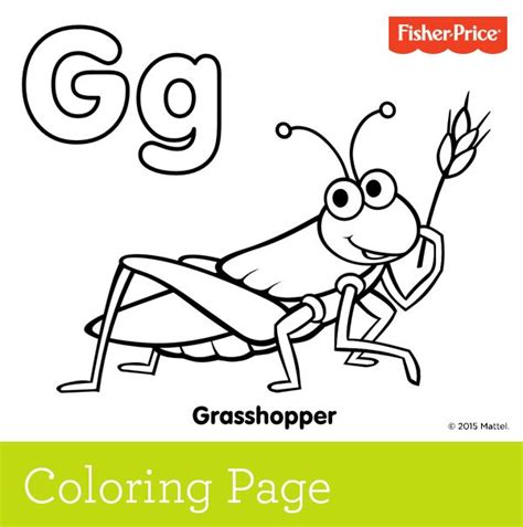 preschool grasshopper coloring pages 18 best grasshopper coloring pages images on pinterest