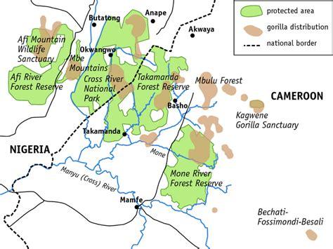 Nigeria: Cross River Gorillas - Berggorilla & Regenwald ...