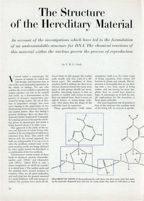 section 10 2 review dna structure very early article about the structure of dna modern