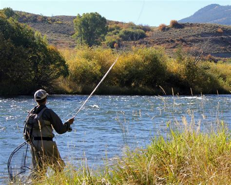 fly fishing colorado s blue colorado fly fishing reports americas cup fly fishing