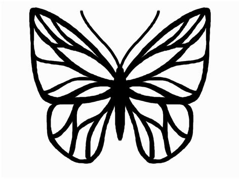 Sketch Outline by Butterfly Outline Butterfly Drawing Template Butterfly Drawing Silhouette Cameo Gclipart