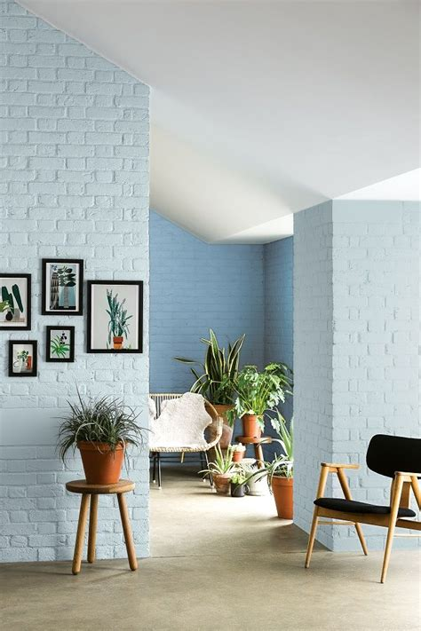brick walls painted  pale blue fresh   interior