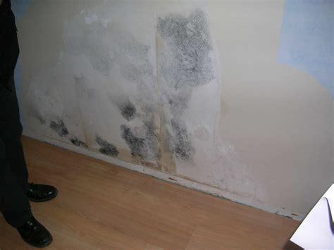 moisissure mur chambre moisissure mur chambre nettoyer la conseils et astuces