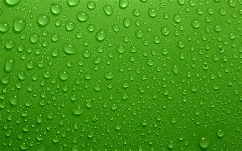 green hd wallpaper best fresh background image use lives fresh wallpapers for laptops 4572 amazing wallpaperz