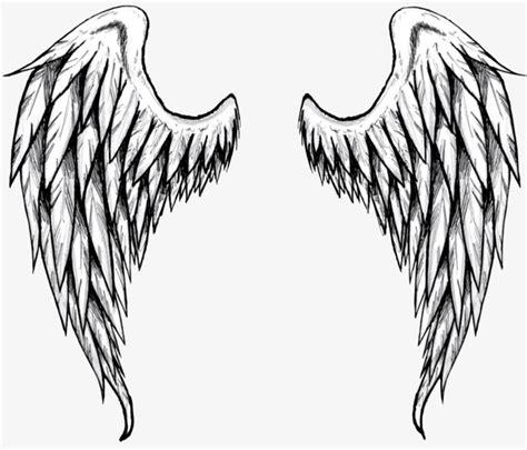 手绘黑白翅膀素材图片免费下载 高清卡通手绘png 千库网 图片编号5757421