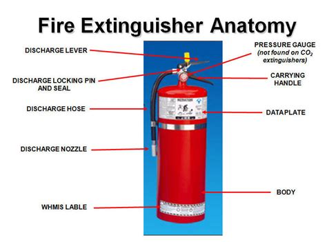 labelled diagram of a extinguisher extinguisher anatomy