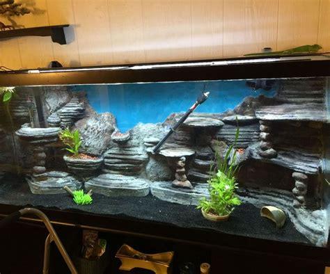 aquarium design for turtles 35 best images about fish tank ideas on pinterest