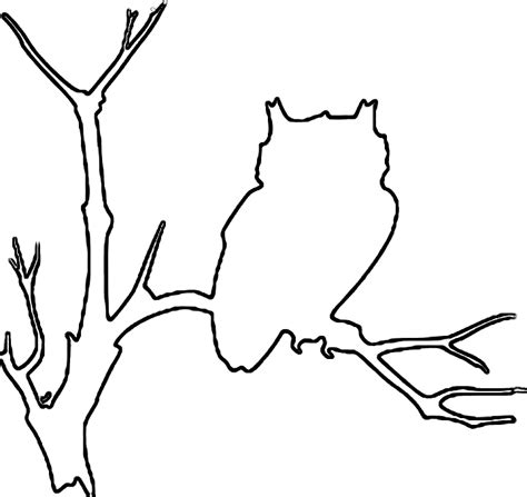 printable outline of an owl outline of an owl az coloring pages