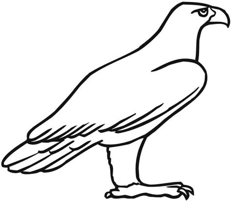 eagle coloring pages preschool eagle drawing for kids drawing art gallery