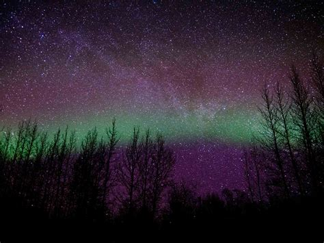 alaska lights tour northern lights tour at murphy dome with airlink alaska