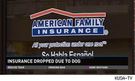 homeowner susie salazar loses insurance policy pit bull