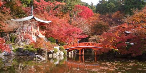 imagenes de paisajes naturales japoneses los mejores destinos para viajar en oto 241 o