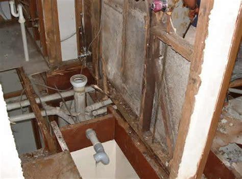 termites in bathroom green termite bait systems termite prevention termite