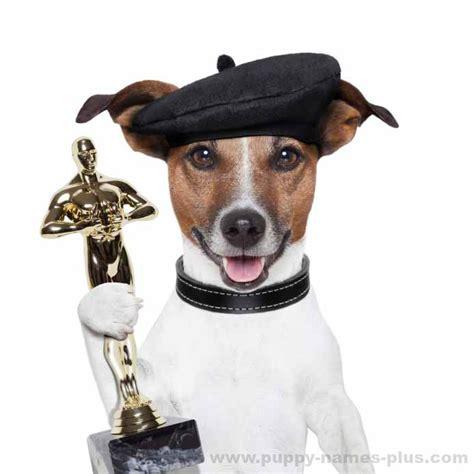 do dogs their name names what do name their pups