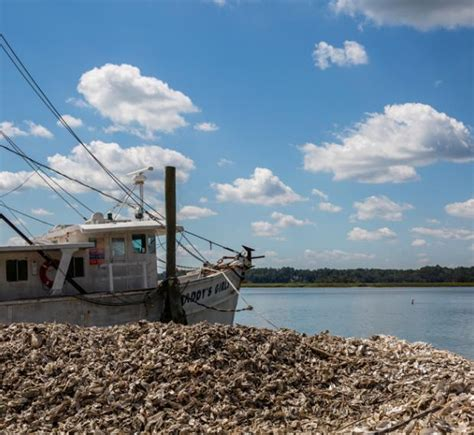 shrimp boat hilton head garvin garvey house hilton head island