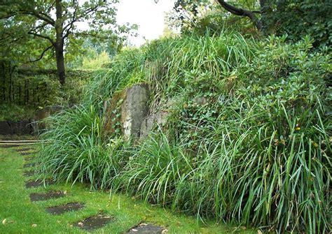 Britzer Garten Gartenplan by Hangbepflanzung Mit Ziergras Japan Berggras Schattige