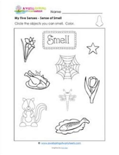 Anatomy Coloring Book Dover My Five Senses Circle The Objects You Can Smell