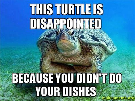 Meme Dishes - this turtle is disappointed because you didn t do your