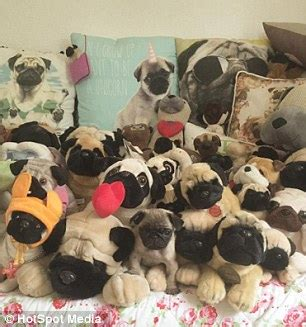 is a pug the right for me lover spends 163 20 000 on 30 pet pugs per year daily mail